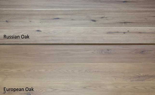 Invisible lacquered oak engineered floor,Russian Oak VS European Oak